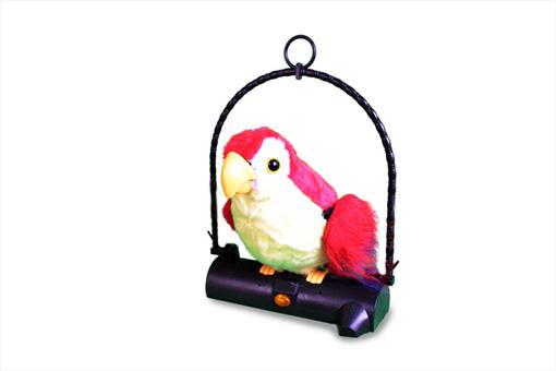 اسباب-بازی-طوطی سخنگو