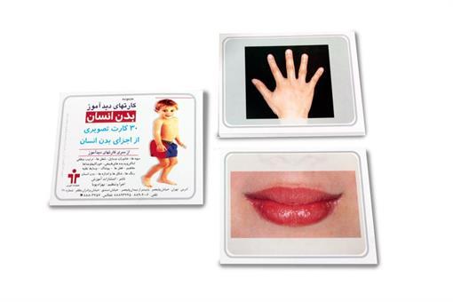 اسباب-بازی-کارت دیدآموز بدن انسان