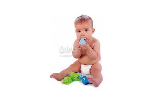 اسباب-بازی-پوپت پلاستیکی حیوانات آبی playgro