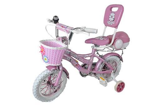اسباب-بازی-دوچرخه 20 پشتدار و صندوق دار ونوس